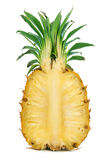 Cut of pineapple Stock Photography
