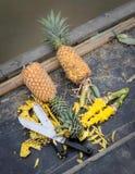 Cut pineapple Stock Photo