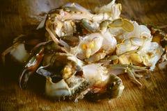 Cut or prepared crab Stock Images