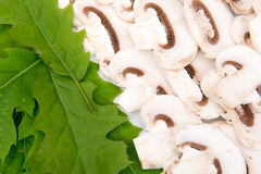 Cut raw mushrooms and leaves Stock Images