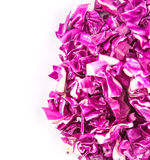 Cut Red Cabbage IV Stock Image