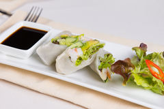 Cut Rice Paper Rolls on Plate Royalty Free Stock Photography