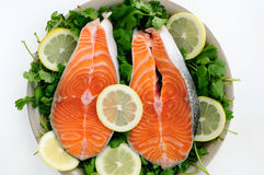 Cut Salmon pieces. Fresh Salmon steak pieces decorated with lemon and cilantro Stock Photos