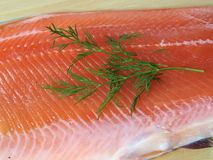 Cut salmon's fragment Royalty Free Stock Photography