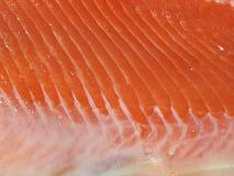 Cut salmon's fragment Stock Photography