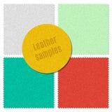 Cut samples of skin texture. Pattern for design. Skin samples. Royalty Free Stock Image