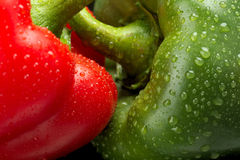Cut shot of green,red bell pepper background with water drops Royalty Free Stock Photo