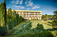Cut shrubs in garden. Newly cut shrubs in garden with apartment building in background royalty free stock photo