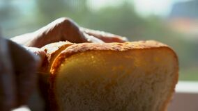 Cut a slice of bread. Fresh bread on a table near the window close-up, lit by the morning sun. The concept of healthy