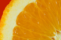 Cut slice of orange close-up. With red corn Royalty Free Stock Photography
