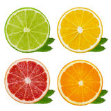 Cut slices of lime and lemon, orange, pink grapefruit isolated on white background. Clipping path Stock Photo
