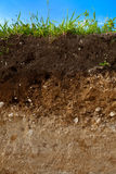 A cut of soil Stock Image