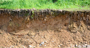 Cut of soil Stock Photos