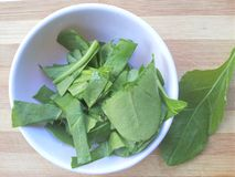 Cut spinach leaf in white bowl Royalty Free Stock Photos