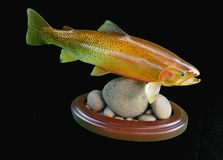 Cut Throat Trout. The cutthroat trout is a fish species of the family Salmonidae native to cold-water tributaries of the Pacific Ocean, Rocky Mountains, and stock image