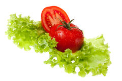Cut tomato on sheet of the salad Stock Images