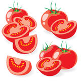 Cut tomatoes vector illustrations Stock Photo