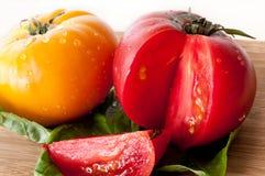 Cut Tomatos Royalty Free Stock Photos
