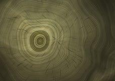 Cut Tree. Close-up Realistic Bitmap Illustration Stock Image
