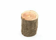 Cut of a tree trunk. On a white background Royalty Free Stock Photos