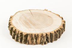 Cut tree on white background. wooden tray.  stock images