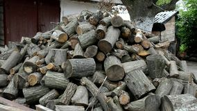 The cut trees are in the yard. Trees are cut into small pieces. In the courtyard behind a bunch of firewood is located a cowshed stock video footage