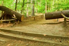 Cut trunk.  Big tree fallen down to the little path in spring forest park. Stock Photography