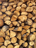 Cut trunks stacked Royalty Free Stock Photography