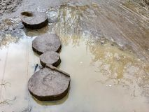 Wooden stepping stones sit in mud with a puddle to the Royalty Free Stock Photos