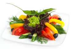 The cut vegetables on a plate Royalty Free Stock Images