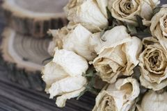 The cut wood with dried roses; dry roses on a cut tree. Vintage decoration Royalty Free Stock Image