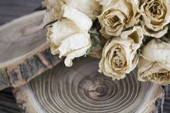 The cut wood with dried roses; dry roses on a cut tree. Vintage decoration Stock Photography
