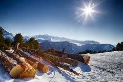 Cut wood logs in front of a panorama of snow-capped peaks Stock Images