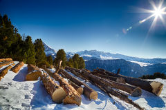 Cut wood logs in front of a panorama of snow-capped peaks Royalty Free Stock Image