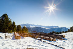 Cut wood logs in front of a panorama of snow-capped peaks Stock Image