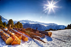 Cut wood logs in front of a panorama of snow-capped peaks. Sawn tree trunks in the snow in front of a panorama of snowy peaks on a bright sunny day in winter in Stock Photos