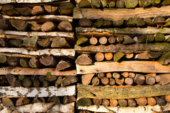 Cut wood Stock Images