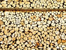 Cut wood stock Stock Image