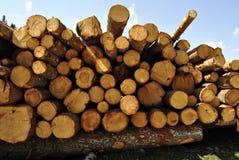 Cut wooden Royalty Free Stock Photos