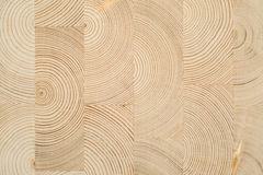 Cut wooden laminated veneer lumber Stock Images