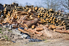 Cut wooden logs Royalty Free Stock Photo