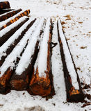 Cut wooden logs in the winter under the snow Stock Image