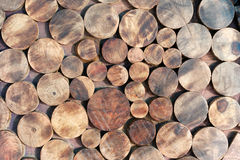 Cut wooden round logs as seating or table or furniture Stock Photo