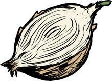 Cut yellow raw onion illustration Royalty Free Stock Photo