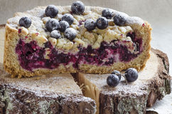 Cutaway blackcurrant crumble on wooden stump Stock Images