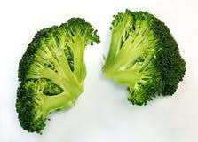 Cutaway of broccoli Stock Photos