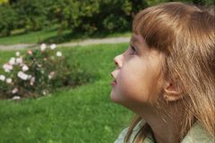 Cute 4 years old girl Royalty Free Stock Photo