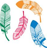 Cute abstract feathers in white background. Vector illuctration vector illustration