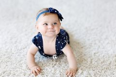 Cute adorable baby girl in blue clothes and headband. little child looking at the camera and crawling. Baby learning. Grab on white background. Portrait of royalty free stock photo