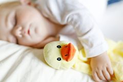 Cute adorable baby girl of 6 months sleeping peaceful in bed at home. Closeup of beautiful calm child, little newborn royalty free stock images
